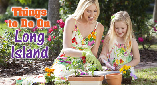things-to-do-banner_SPRING