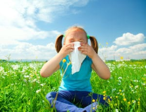Tips for Spring Allergies on Long Island