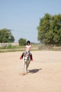 horseback riding lessons on Long Island