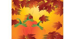 Pumpkin Picking on Long Island | Your Local Kids