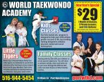 World Taekwondo Academy