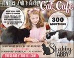 The Shabby Tabby Cat Cafe – Huntington