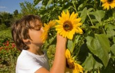 Fun Educational Activities Open for Kids on Long Island