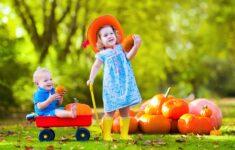 Long Island Farms Provide Fantastic Fall Family Fun