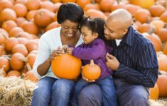In-Person Fall Family Fun Locations Now Open on Long Island