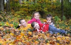 7 Fun Family Things To Do as the Weather Cools